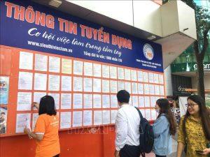 Địa chỉ nơi nhận trợ cấp thất nghiệp tại TP Hồ Chí Minh