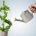 Bỏ vốn vào đầu tư có phải nhà đầu tư không